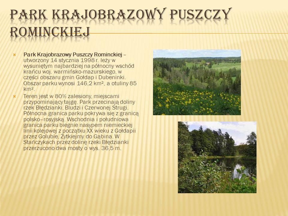Park Krajobrazowy Puszczy Rominckiej – utworzony 14 stycznia 1998 r. leży w wysuniętym najbardziej na północny wschód krańcu woj. warmińsko-mazurskieg