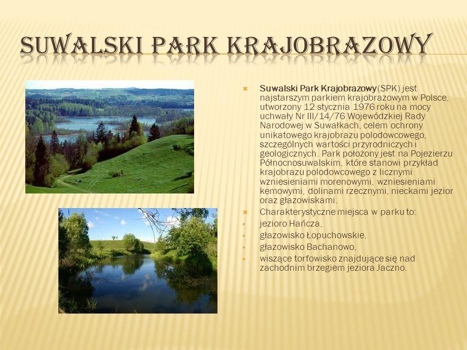 Suwalski Park Krajobrazowy (SPK) jest najstarszym parkiem krajobrazowym w Polsce, utworzony 12 stycznia 1976 roku na mocy uchwały Nr III/14/76 Wojewód
