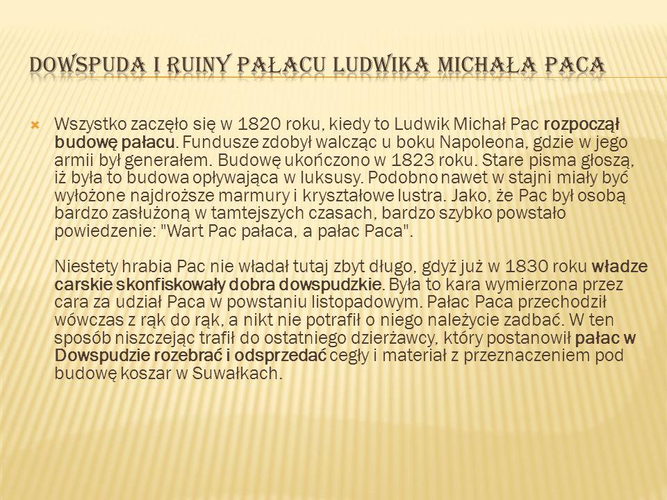 Wszystko zaczęło się w 1820 roku, kiedy to Ludwik Michał Pac rozpoczął budowę pałacu. Fundusze zdobył walcząc u boku Napoleona, gdzie w jego armii był