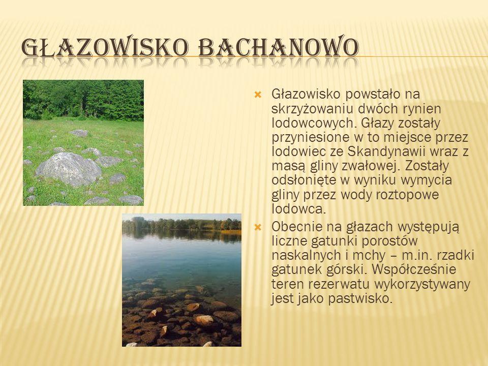 Studzieniczna – część administracyjna Augustowa, do 1973 samodzielna wieś, w województwie podlaskim, na terenie Pojezierza Suwalskiego, nad Jeziorem Studzienicznym i Stawem Studzieniczańskim.