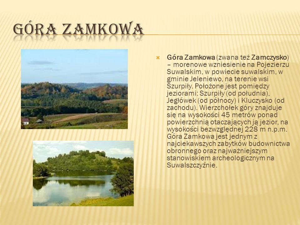 Góra Cisowa w Suwalskim Parku Krajobrazowym to doskonały punkt widokowy (256 m n.p.m.).