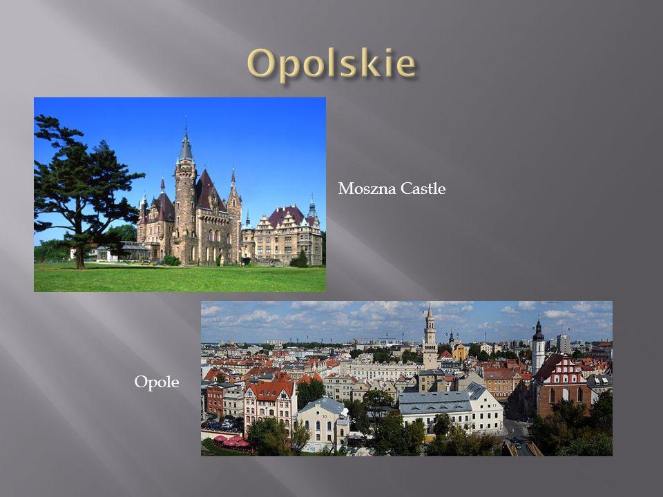 Opole Moszna Castle