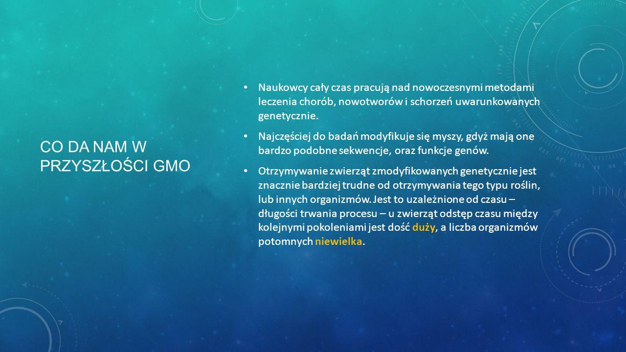 CO DA NAM W PRZYSZŁOŚCI GMO Naukowcy cały czas pracują nad nowoczesnymi metodami leczenia chorób, nowotworów i schorzeń uwarunkowanych genetycznie. Na