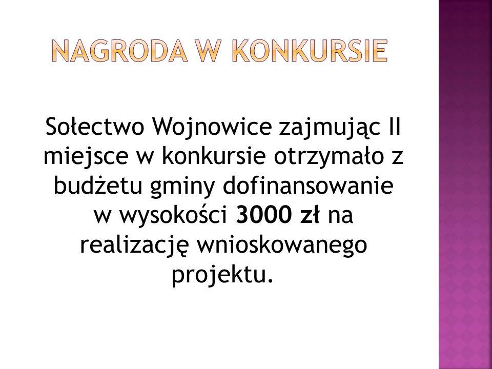 Sołectwo Wojnowice zajmując II miejsce w konkursie otrzymało z budżetu gminy dofinansowanie w wysokości 3000 zł na realizację wnioskowanego projektu.