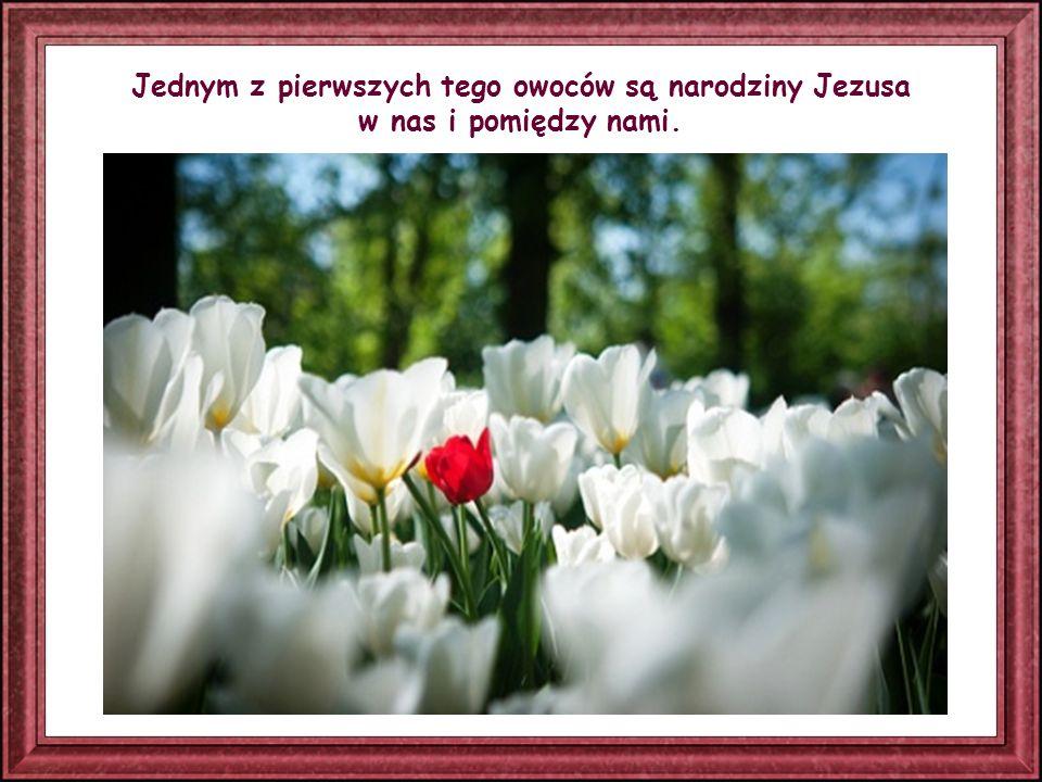 Tak jak ciało, aby żyć – oddycha, podobnie dusza, aby żyć – żyje Słowem Bożym.