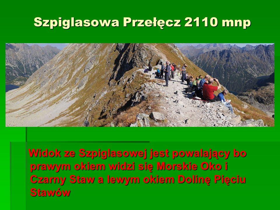 Szpiglasowa Przełęcz 2110 mnp Widok ze Szpiglasowej jest powalający bo prawym okiem widzi się Morskie Oko i Czarny Staw a lewym okiem Dolinę Pięciu St