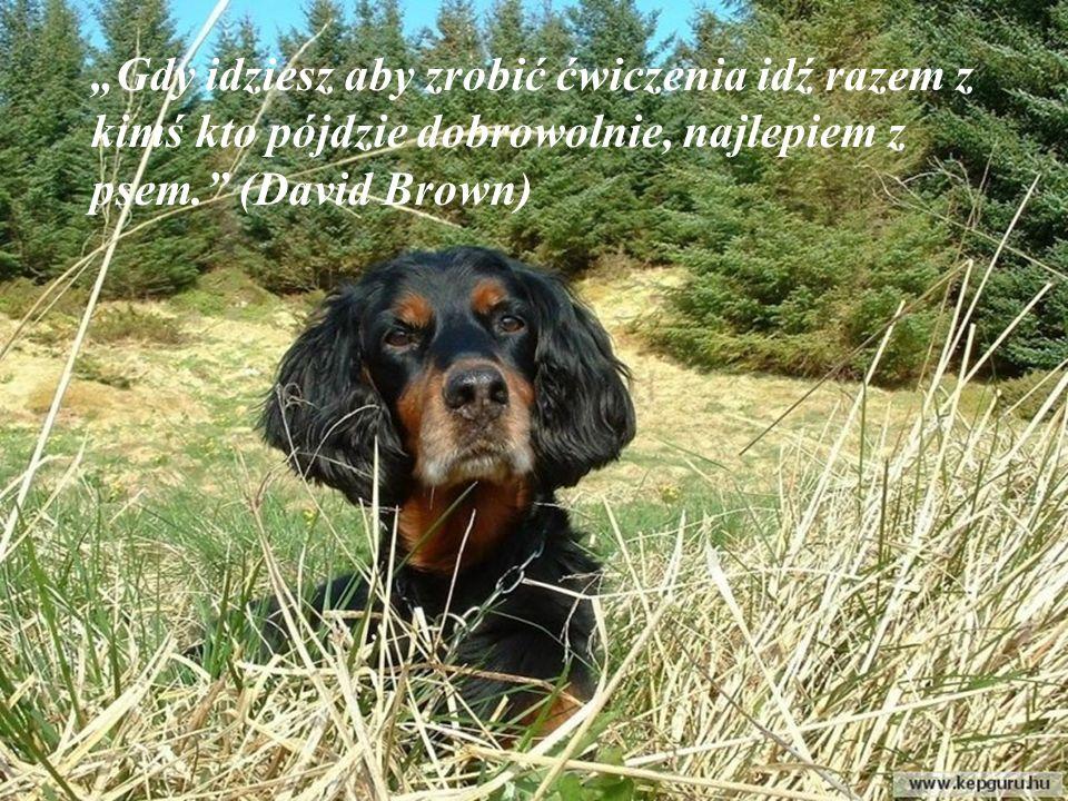 Rozważać wieczorem patrząc na gwiazdy i pogłaskać swojego psa, jest najlepszym lekarstwem. (Ralph Waldo Emerson)