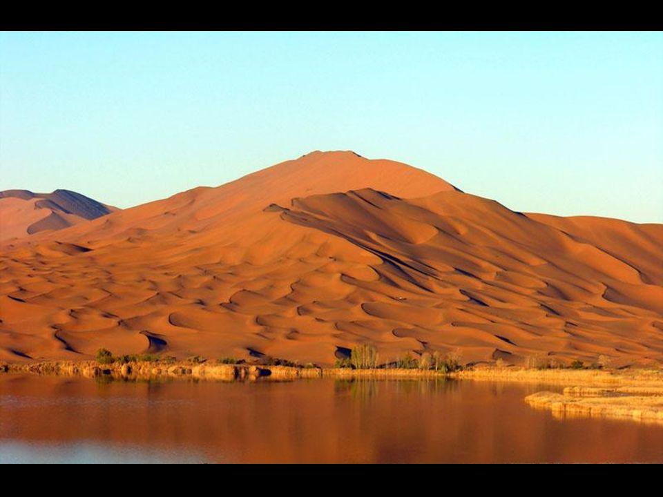 Wynik tego – ogromna pustynia pełna jezior