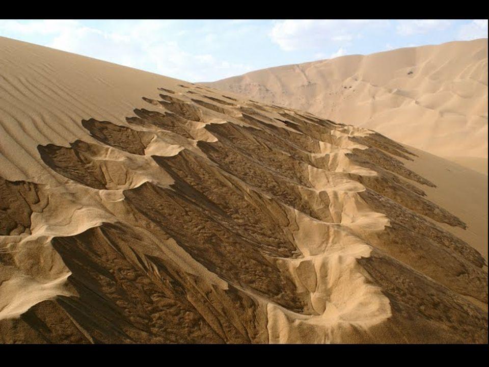 Pustynia Badain Jaran znajduje się na północy Chin, w środku Mongolii. Ta pustynia ma niezwykłe cechy: miejsce tych wydm jest w najwyższych terenach ś