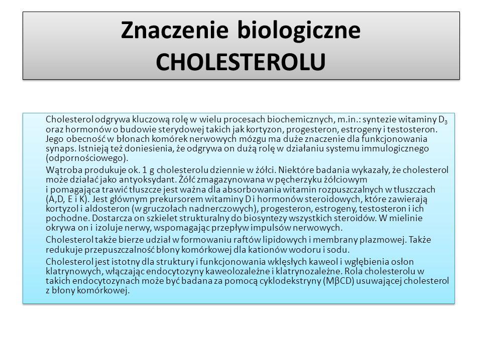 Znaczenie biologiczne CHOLESTEROLU Cholesterol odgrywa kluczową rolę w wielu procesach biochemicznych, m.in.: syntezie witaminy D 3 oraz hormonów o bu