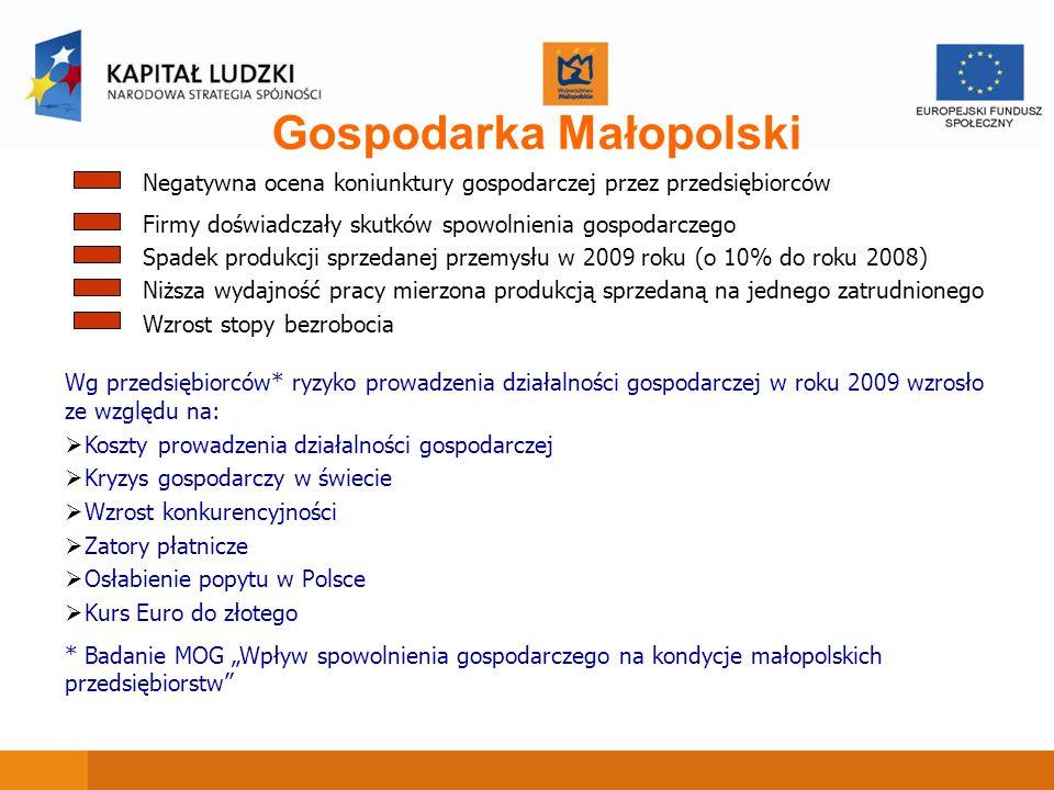 Gospodarka Małopolski Spadek produkcji sprzedanej przemysłu w 2009 roku (o 10% do roku 2008) Firmy doświadczały skutków spowolnienia gospodarczego Niż