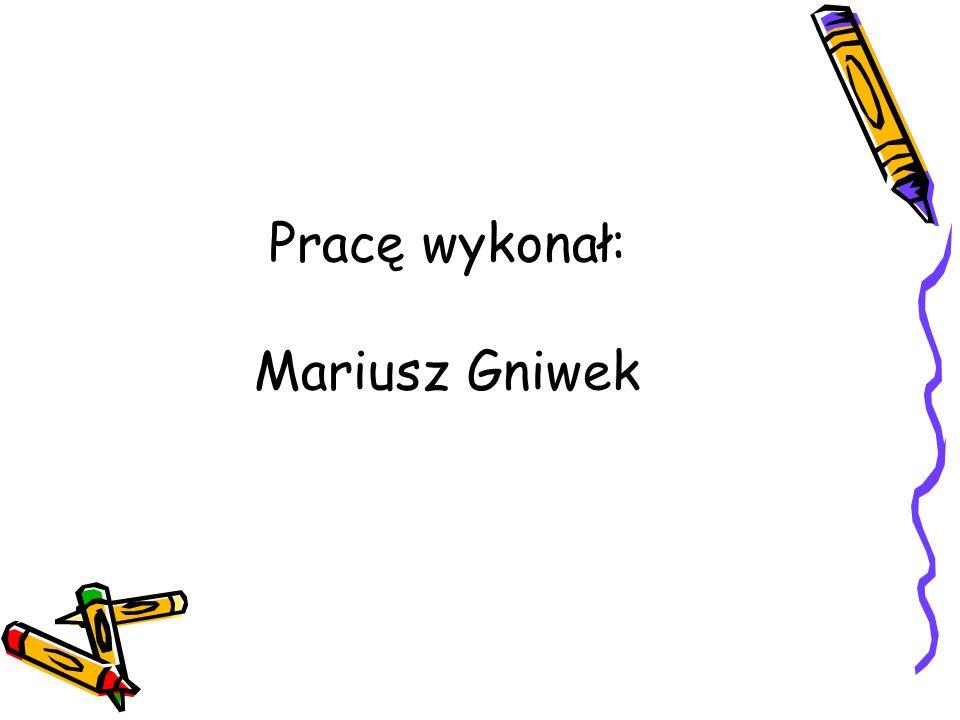 Pracę wykonał: Mariusz Gniwek