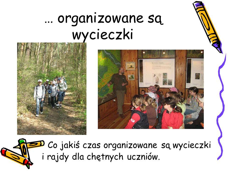 … organizowane są wycieczki Co jakiś czas organizowane są wycieczki i rajdy dla chętnych uczniów.