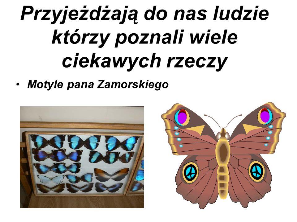 Przyjeżdżają do nas ludzie którzy poznali wiele ciekawych rzeczy Motyle pana Zamorskiego