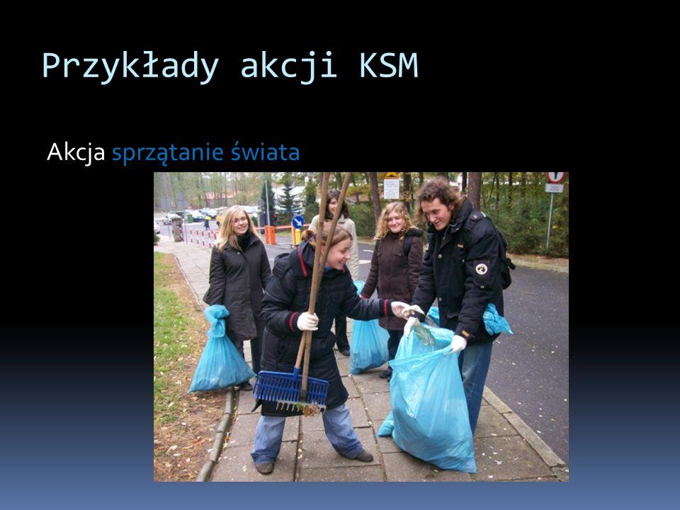 Przykłady akcji KSM Akcja sprzątanie świata