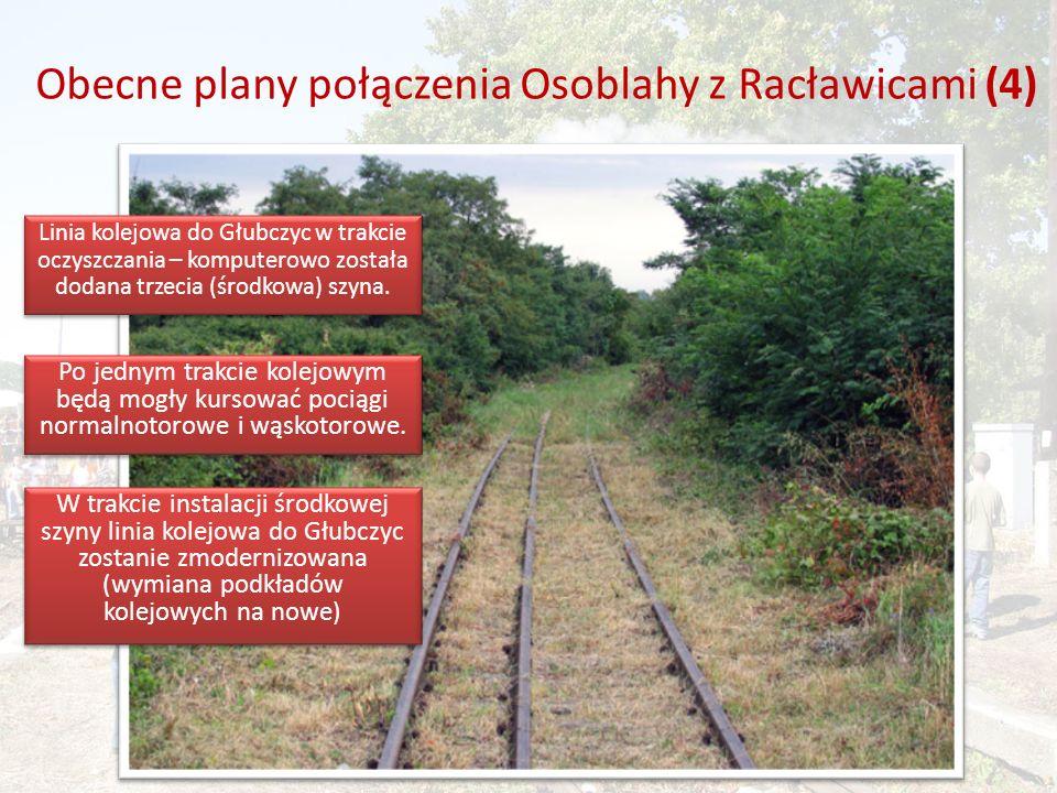 Obecne plany połączenia Osoblahy z Racławicami (4) Linia kolejowa do Głubczyc w trakcie oczyszczania – komputerowo została dodana trzecia (środkowa) szyna.
