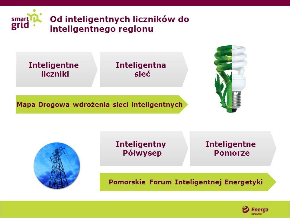 Od inteligentnych liczników do inteligentnego regionu Inteligentne liczniki Inteligentna sieć Inteligentny Półwysep Inteligentne Pomorze Mapa Drogowa