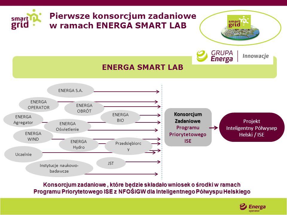 ENERGA BIO ENERGA Hydro JST Instytucje naukowo- badawcze Uczelnie Przedsiębiorc y KonsorcjumZadaniowe Programu Priorytetowego ISE Projekt Inteligentny
