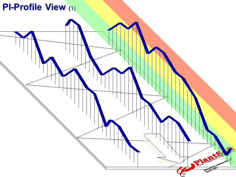 PI-Profile View (2)