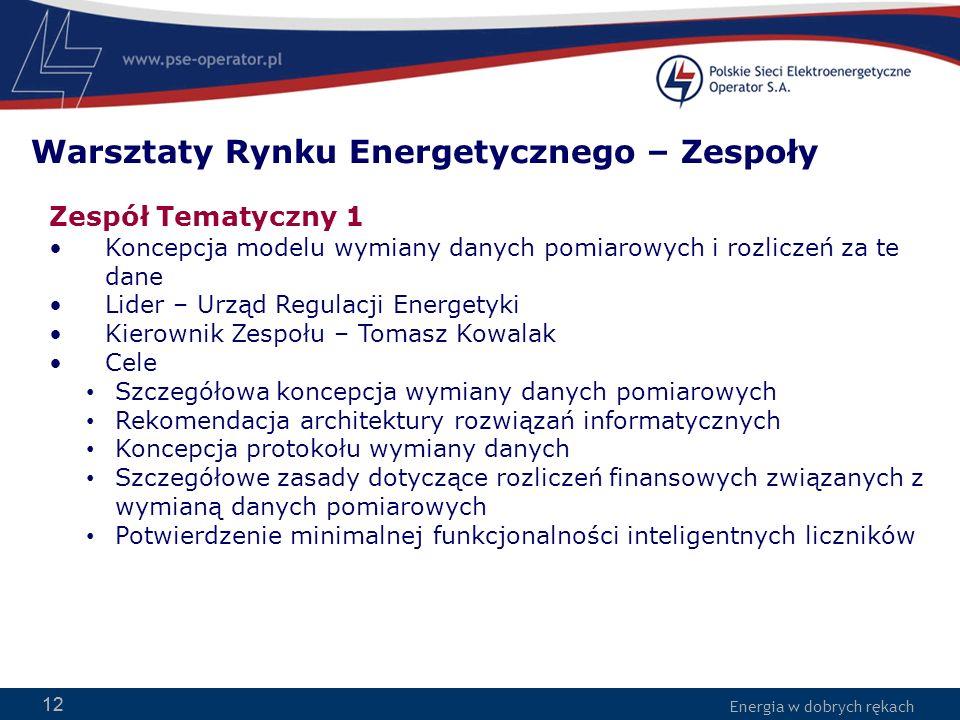 Energia w dobrych rękach 12 Zespół Tematyczny 1 Koncepcja modelu wymiany danych pomiarowych i rozliczeń za te dane Lider – Urząd Regulacji Energetyki