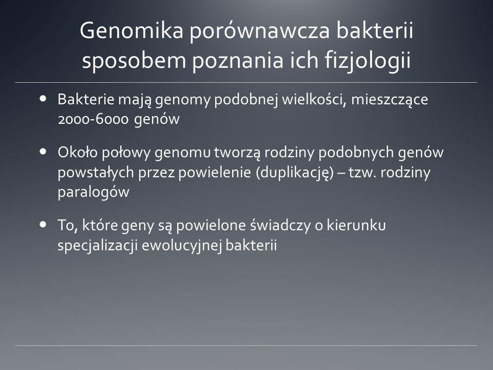 Genomika porównawcza bakterii sposobem poznania ich fizjologii Bakterie mają genomy podobnej wielkości, mieszczące 2000-6000 genów Około połowy genomu tworzą rodziny podobnych genów powstałych przez powielenie (duplikację) – tzw.