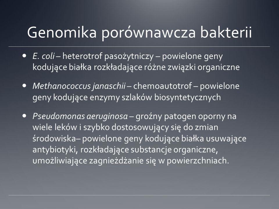 Genomika porównawcza bakterii E.