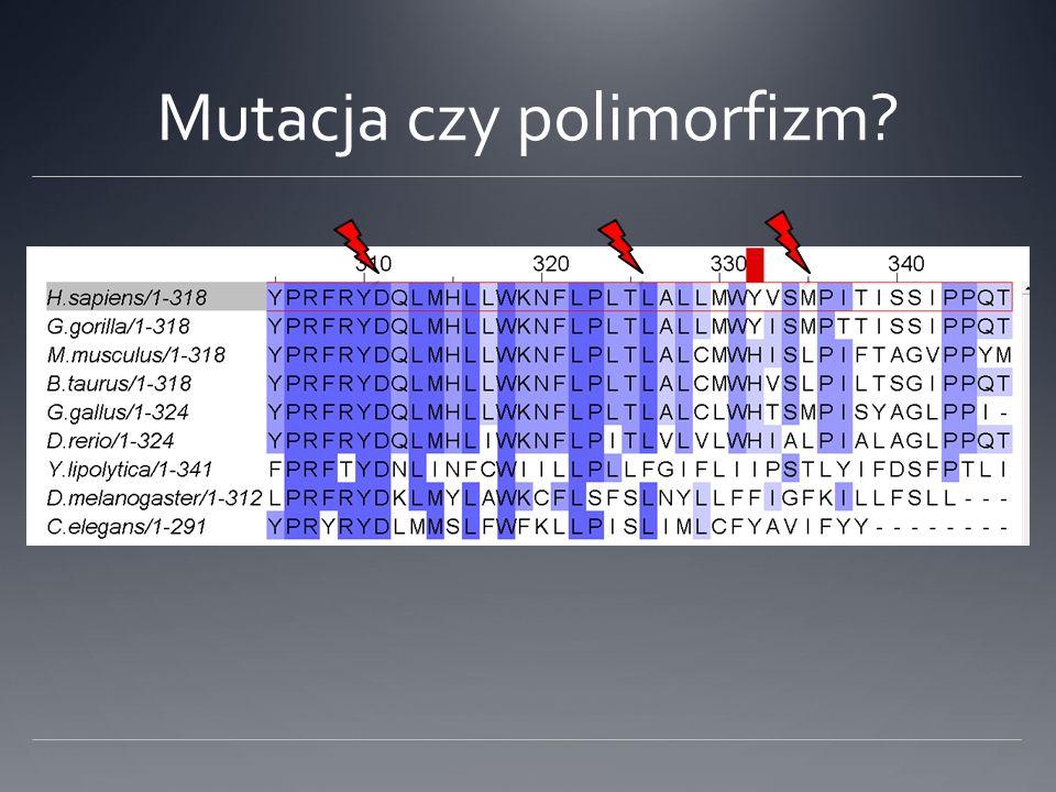 Mutacja czy polimorfizm?