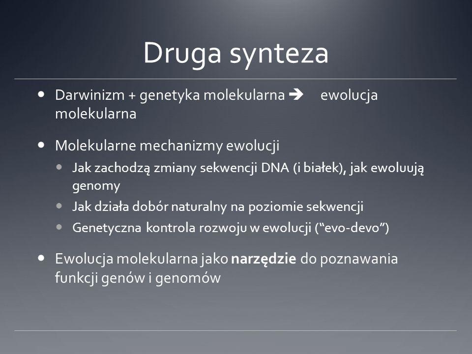 Druga synteza Darwinizm + genetyka molekularna ewolucja molekularna Molekularne mechanizmy ewolucji Jak zachodzą zmiany sekwencji DNA (i białek), jak