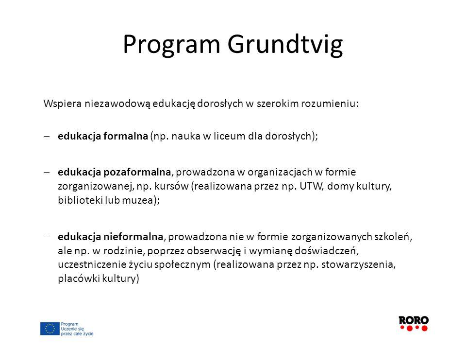 Program Grundtvig Wspiera niezawodową edukację dorosłych w szerokim rozumieniu: edukacja formalna (np. nauka w liceum dla dorosłych); edukacja pozafor