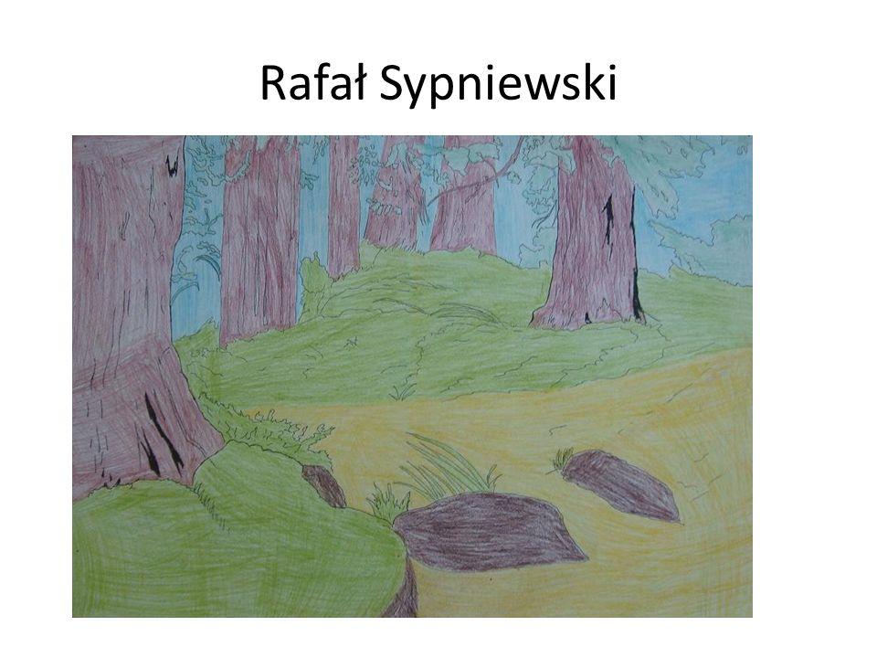 Rafał Sypniewski
