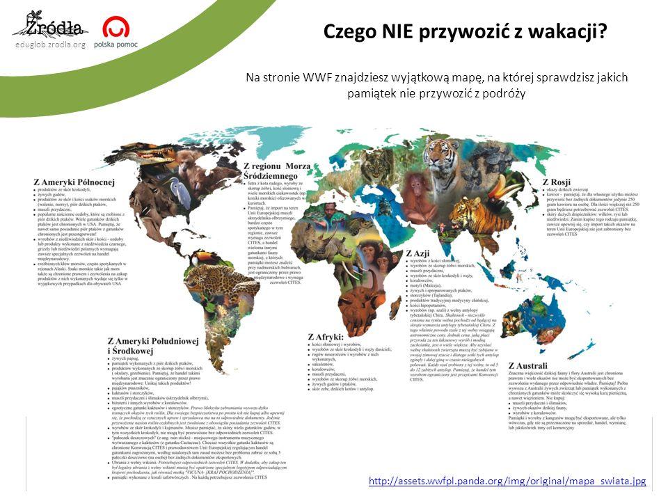 eduglob.zrodla.org Na stronie WWF znajdziesz wyjątkową mapę, na której sprawdzisz jakich pamiątek nie przywozić z podróży Czego NIE przywozić z wakacj