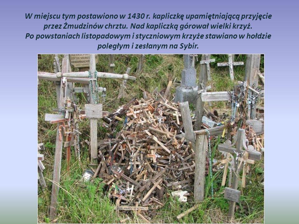 Zesłańcy z gułagów po powrocie na Litwę zaczęli wznosić tu krzyże dziękczynne za ocalenie i powrót na ojczystą ziemię.