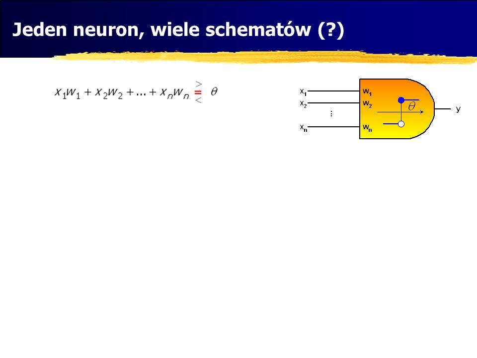 Jeden neuron, wiele schematów (?)