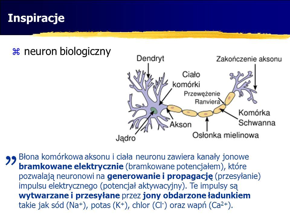 Inspiracje neuron biologiczny Błona komórkowa aksonu i ciała neuronu zawiera kanały jonowe bramkowane elektrycznie (bramkowane potencjałem), które poz