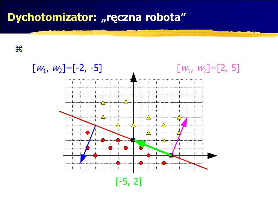 Dychotomizator: ręczna robota [w 1, w 2 ]=[-2, -5][w 1, w 2 ]=[2, 5] [-5, 2]