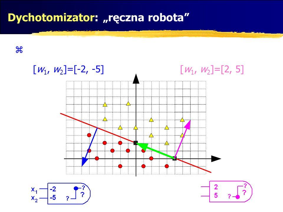 Dychotomizator: ręczna robota [w 1, w 2 ]=[-2, -5][w 1, w 2 ]=[2, 5]