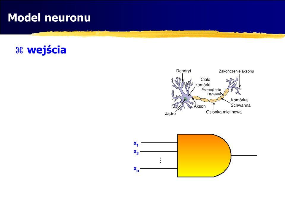 Model neuronu wejścia