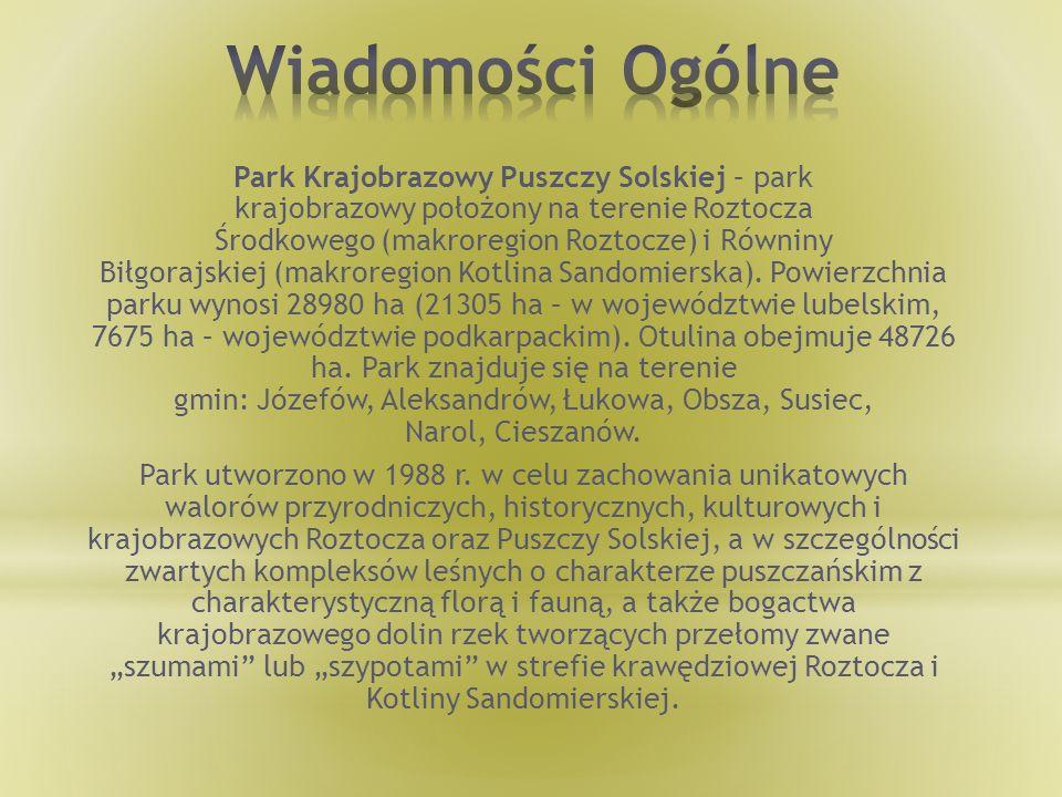 Park Krajobrazowy Puszczy Solskiej – park krajobrazowy położony na terenie Roztocza Środkowego (makroregion Roztocze) i Równiny Biłgorajskiej (makrore