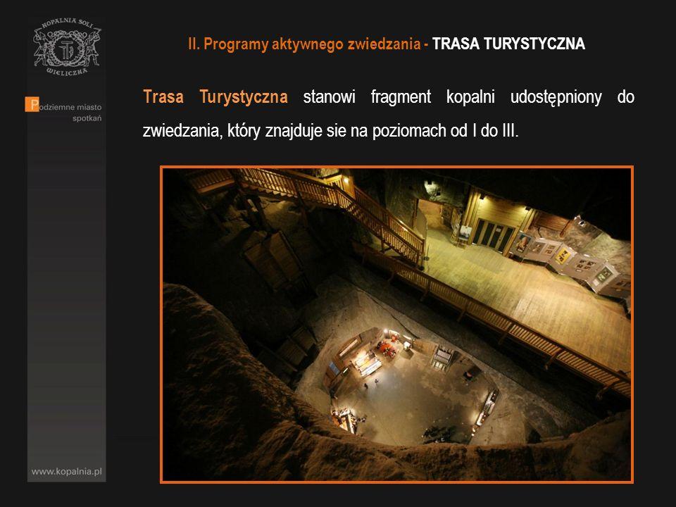 Trasa Turystyczna stanowi fragment kopalni udostępniony do zwiedzania, który znajduje sie na poziomach od I do III. II. Programy aktywnego zwiedzania