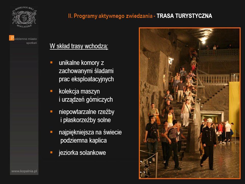 W skład trasy wchodzą: unikalne komory z zachowanymi śladami prac eksploatacyjnych kolekcja maszyn i urządzeń górniczych niepowtarzalne rzeźby i płask