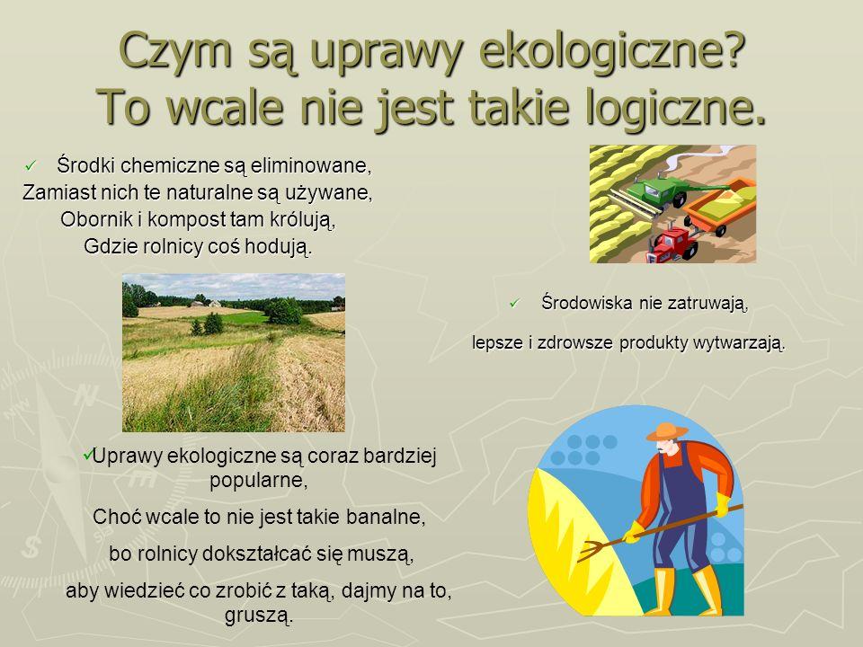 Czym są uprawy ekologiczne? To wcale nie jest takie logiczne. Środki chemiczne są eliminowane, Środki chemiczne są eliminowane, Zamiast nich te natura