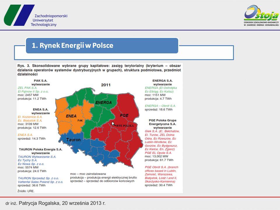 1.Rynek Energii w Polsce W sektorze paliwowo-energetycznym pracuje w Polsce około 300 tys.