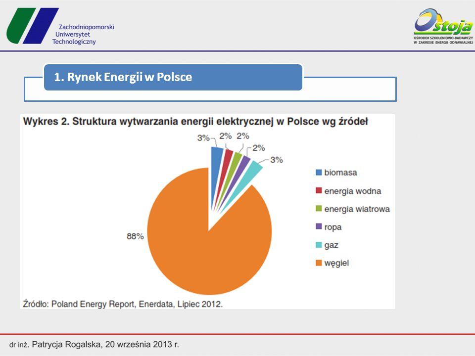 - 656 spółdzielni energetycznych w Niemczech w 2013 r.