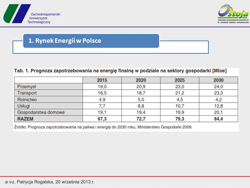 Wolumen krajowej produkcji energii elektrycznej brutto w 2011 roku ukształtował się na poziomie 163,2 TWh, co stanowi przyrost o 4% w stosunku do roku 2010.