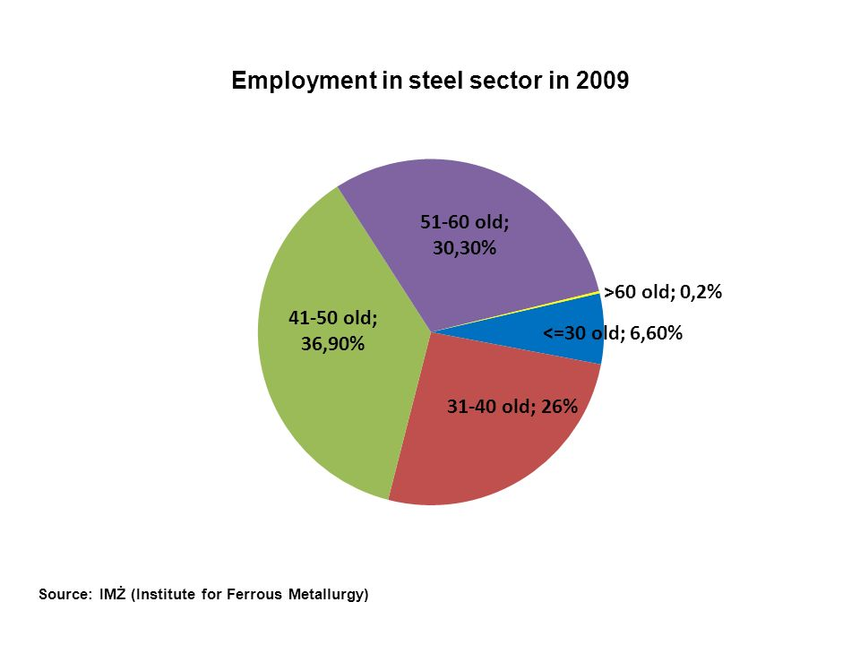 Structure of employer education in steel sector in 2009 Source: IMŻ (Institute for Ferrous Metallurgy)