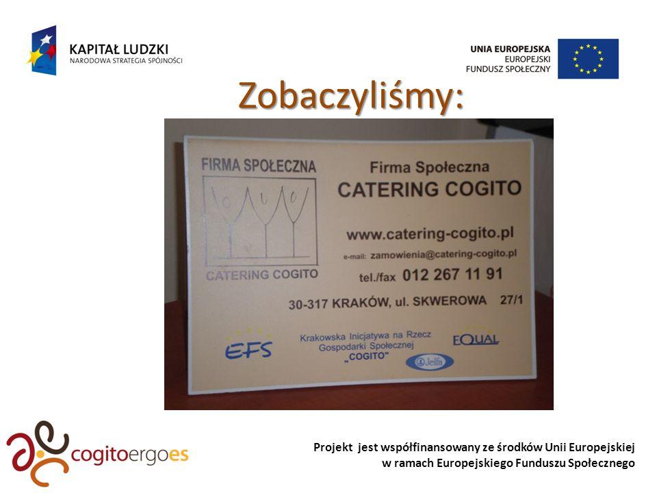 Projekt jest współfinansowany ze środków Unii Europejskiej w ramach Europejskiego Funduszu Społecznego Zobaczyliśmy:
