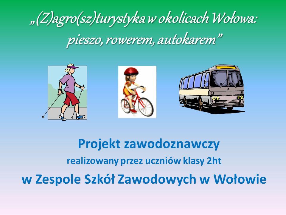 (Z)agro(sz)turystyka w okolicach Wołowa: pieszo, rowerem, autokarem PROJEKT ZAKŁADAŁ: wyszukiwanie gospodarstw agroturystycznych w okolicach Wołowa, do których można dotrzeć pieszo, rowerem i autokarem; opis tras dotarcia do tych gospodarstw oraz ich promocję; opracowanie materiałów informacyjno- promocyjnych (map, folderu, prezentacji multimedialnej).