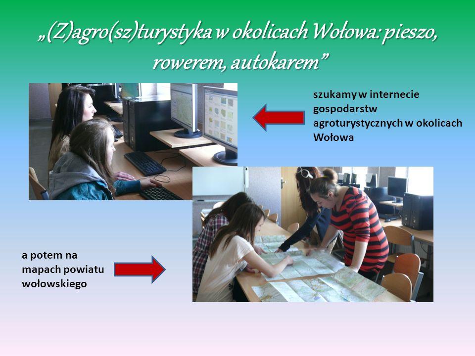(Z)agro(sz)turystyka w okolicach Wołowa: pieszo, rowerem, autokarem szukamy w internecie gospodarstw agroturystycznych w okolicach Wołowa a potem na m