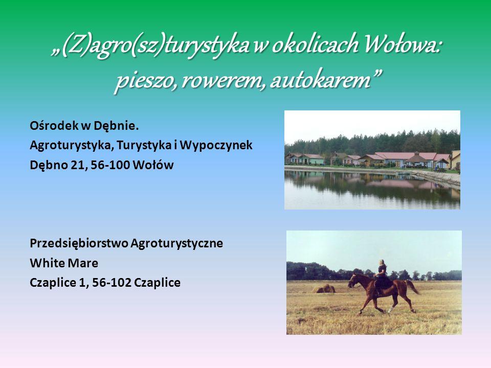 (Z)agro(sz)turystyka w okolicach Wołowa: pieszo, rowerem, autokarem Ośrodek w Dębnie.