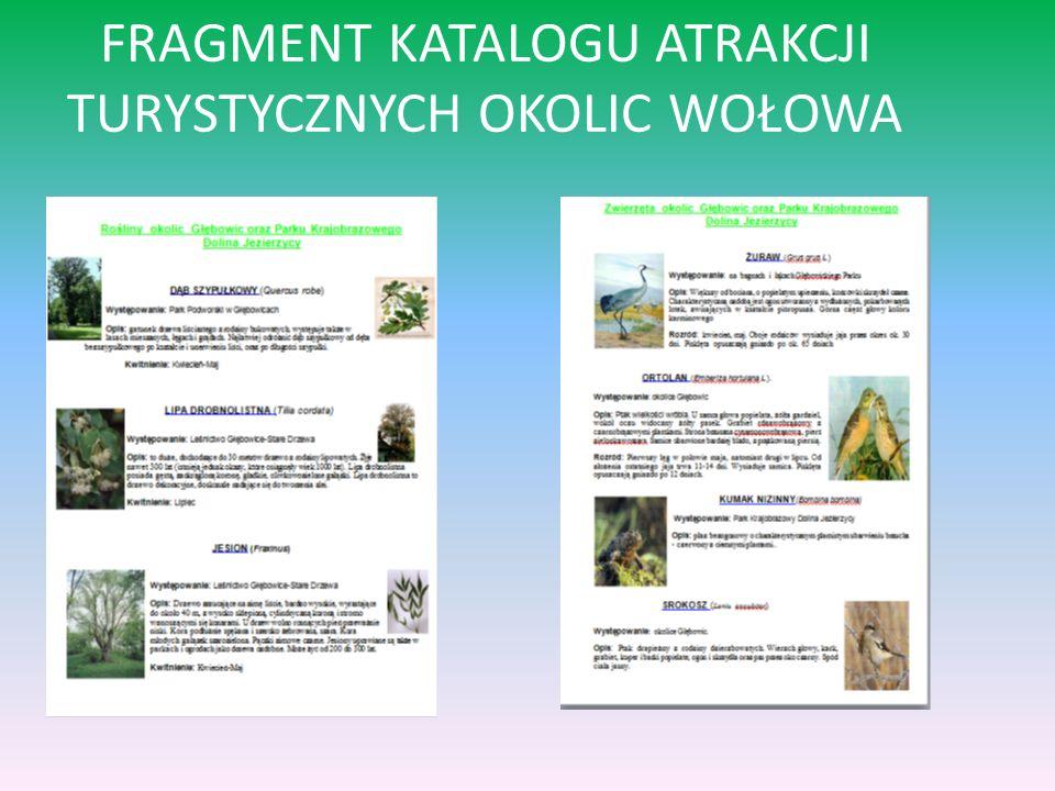 FRAGMENT KATALOGU ATRAKCJI TURYSTYCZNYCH OKOLIC WOŁOWA